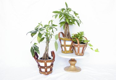 Upcycle Leather Belts Into Modern Plant Holders