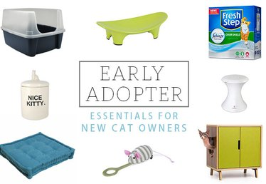 Early Adopter: 10 Essentials for New Cat Owners