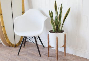How to Build a Mid-Century Inspired Plant Stand  that Looks Like it Belongs in a Dwell Magazine
