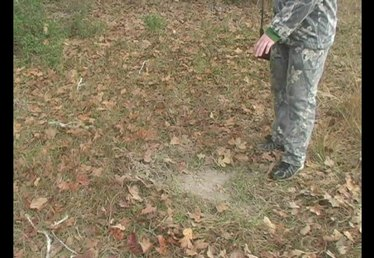 How to Hunt & Track a Deer