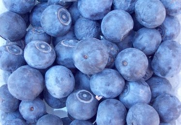 How to Freeze Blueberry Pie Filling