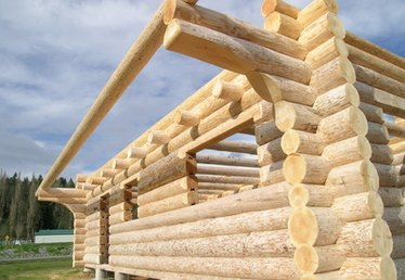 What Kind of Trees Can I Use for a Log Home?