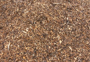 Licorice Root Mulch Characteristics