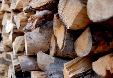 The Facts About Oak as a Firewood