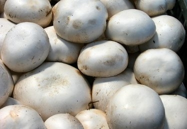 How Long Can You Keep Fresh Mushrooms in the Refrigerator?