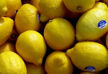 In What Countries Do Lemon Trees Grow?