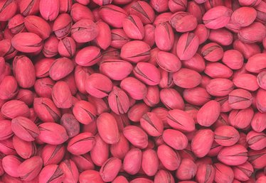 How to Harvest Pistachio Nuts