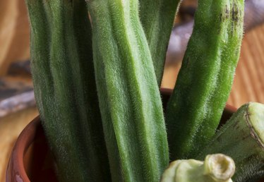 How to Prepare Okra for Gumbo
