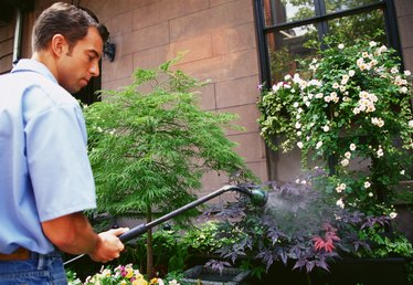 How to Clean Exterior Windows With a Garden Hose Attachment