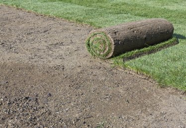 How to Calculate Sod