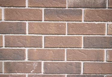 How to Get Rid of Black Mold on Exterior Brick