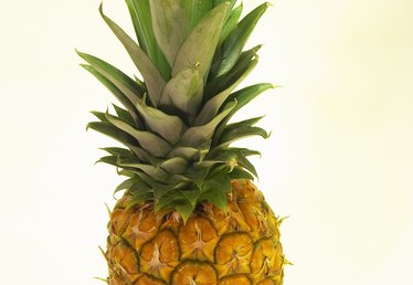 How to Make a Pineapple Paper Mache
