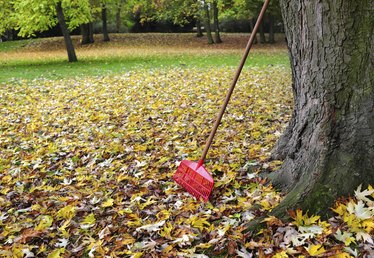 Tools Used to Gather and Pick Up Leaves