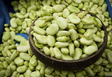 What Is a Broad Bean?