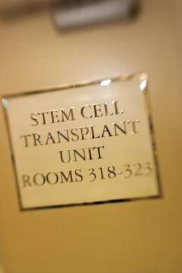 Most stem cell transplant therapies are still in the very early stages of development.