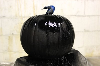 Apply chalkboard spray paint to the pumpkin