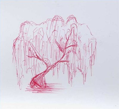 Draw a Wheeping Willow Tree