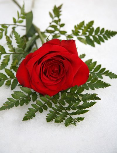 Attach a single red rose to each invitation.