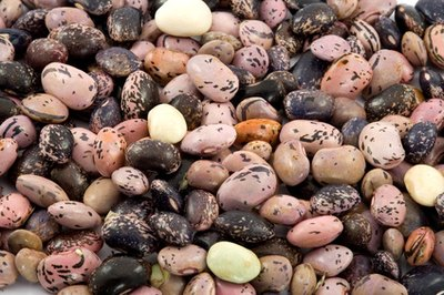 Beans protect the body from colds in spring and autumn by expelling moisture.
