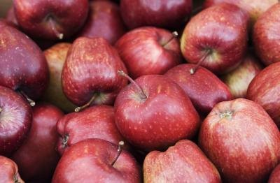 Red Delicious apples are one of the most largely grown varieties in the United States.