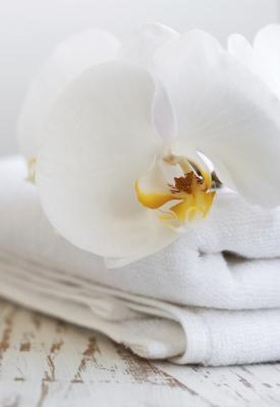 Folded towel with orchid