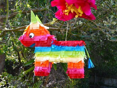 Hang the piñata on a branch and enjoy.