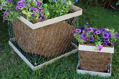 Potted chicken wire plant boxes.