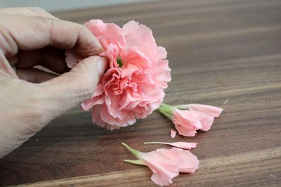 Perform a carnation hack.