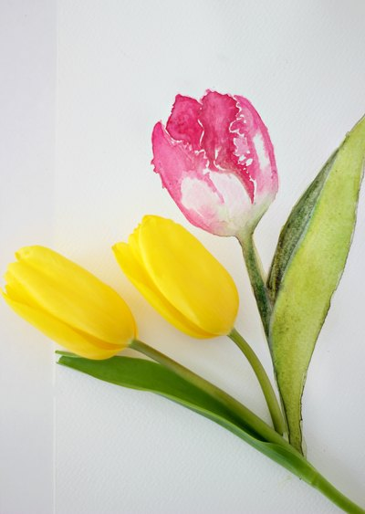 Learn to paint a tulip with watercolor.