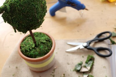 Trim away any excess moss with scissors.