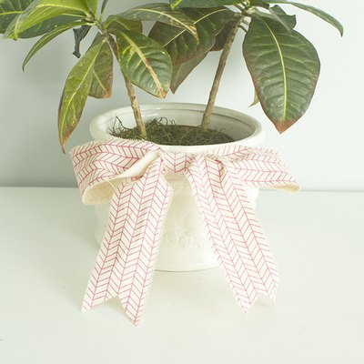 Dress up a potted plant with a large bow.
