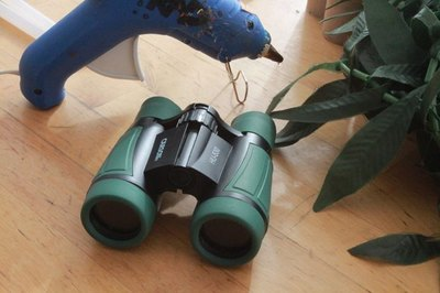 Plastic toy binoculars can be found at discount and dollar stores.