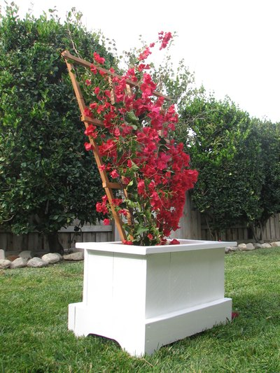 A trellis in the planter box can spread the box's color over a larger area.