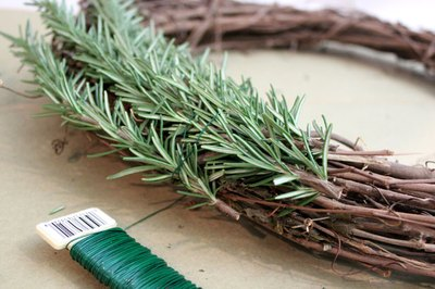 Wrap the wire around the rosemary sprigs.