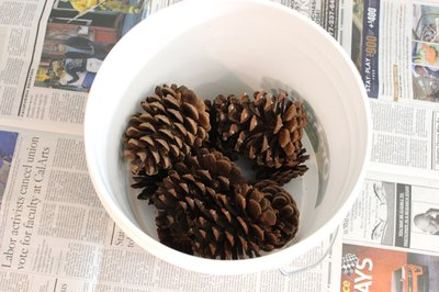 Bleach pine cones in small batches.