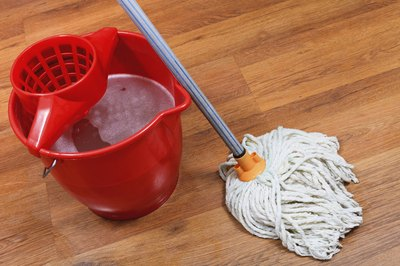 Mop and bucket cleaning wood floor