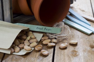 Seed packets carry planting specifics for your seeds.