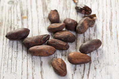 Close-up of cocoa beans on white table
