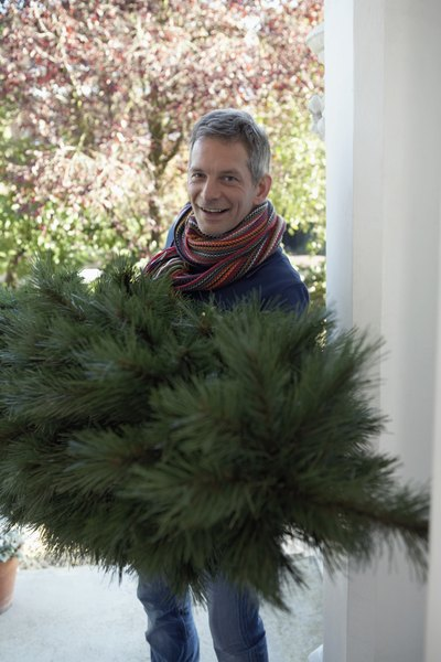Man carrying Christmas tree into house