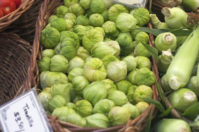 Tomatillos for sale at farmer market