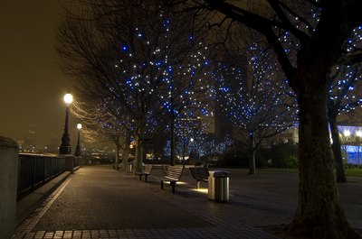 A city park is lined with trees strung with blue and white lights.