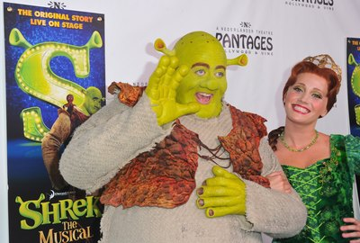 Shrek and Princess Fiona costumes