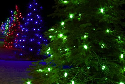 Christmas trees lit in assorted colors.