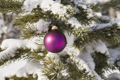 Using spray snow can make your tree have an outdoor look.
