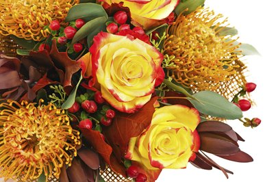 Red hypericum filler adds colorful accents to seasonal arrangements.