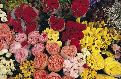 choose blooms that are fragrant like roses