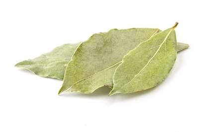 Bay leaves may not be the boldest or most brazen flavor in a cook's cabinet, but it's more potent than you may think.