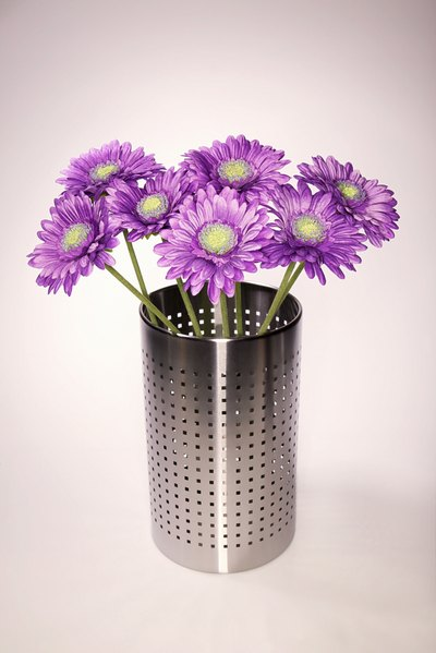 Gerbera daisies are commonly used to express cheer.