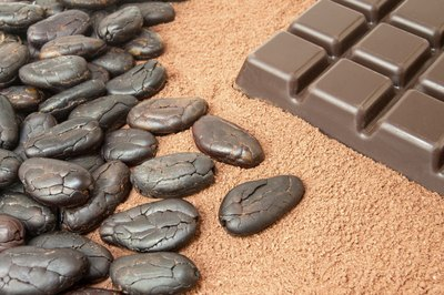 Roasted cocoa beans beside a chocolate bar
