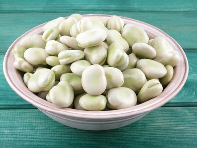 Broad beans are used in the same general way as dried New World beans.